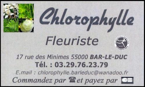 Chlorophylle 600